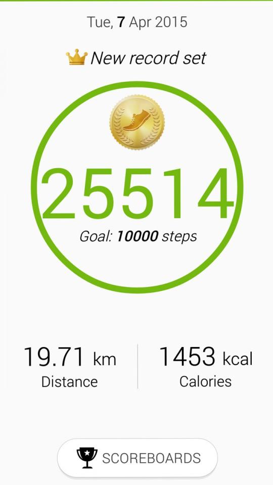 Nearly 20km's walking today!