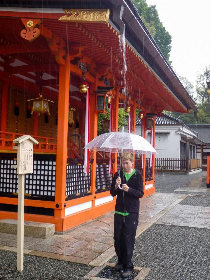 Umbrella testing spot